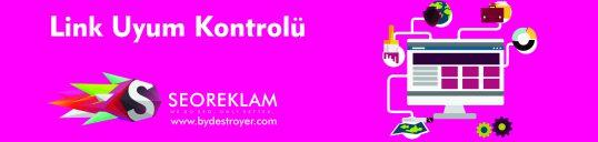 link-uyum-kontrolu