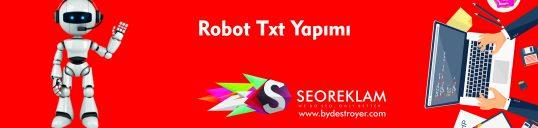Robots Txt Yapımı
