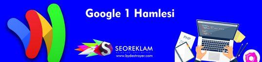 Google'dan 1 Hamlesi