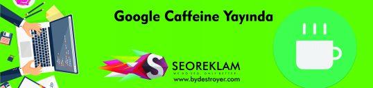 Google Caffeine Yayında