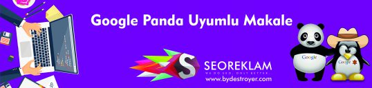 Google Panda Uyumlu Makale