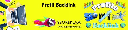 Profil Backlink